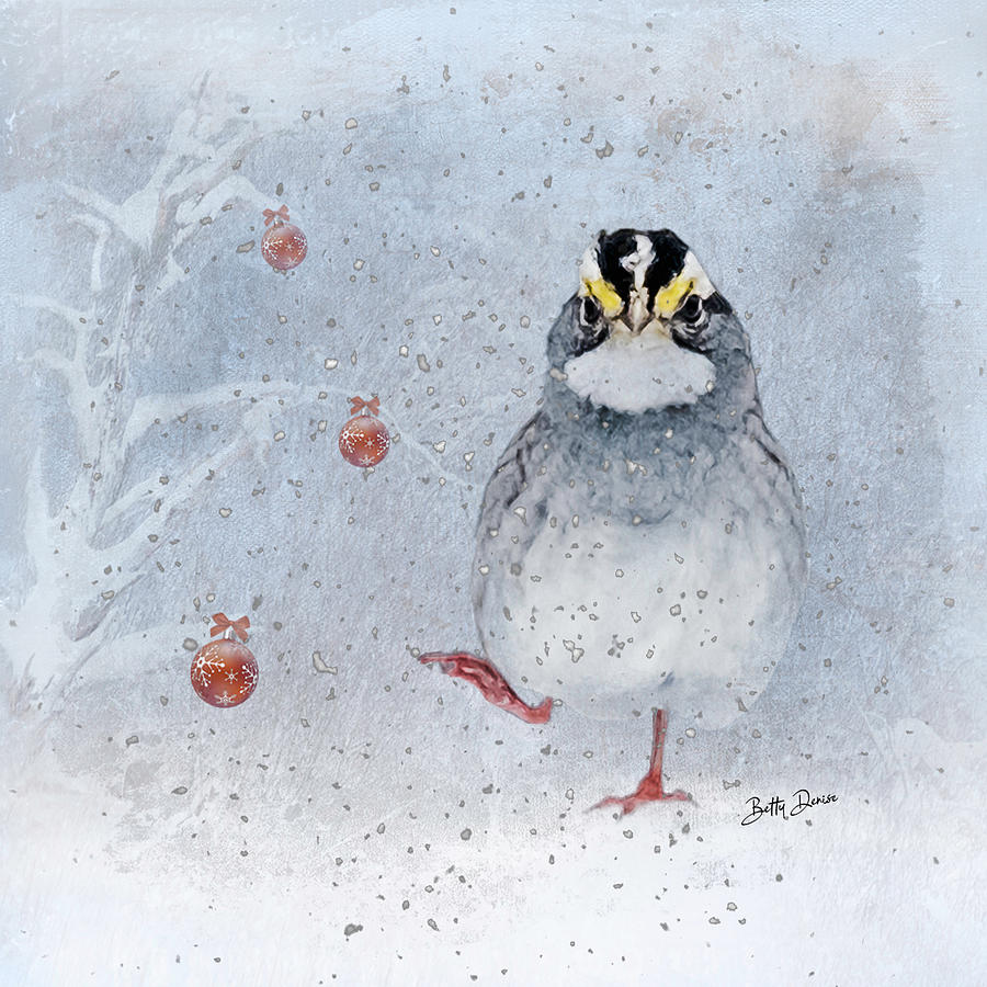 White Throated Sparrow in Winter by Betty Denise