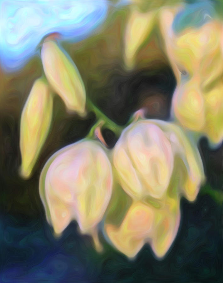 White Yucca Flowers in the Morning Light by Barbara Rogers