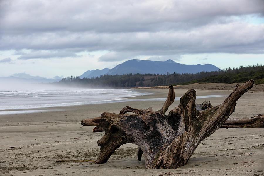 Wick Beach Photograph