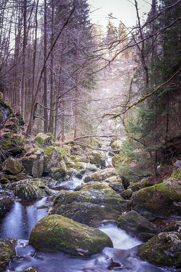 Wild River Scene Photograph