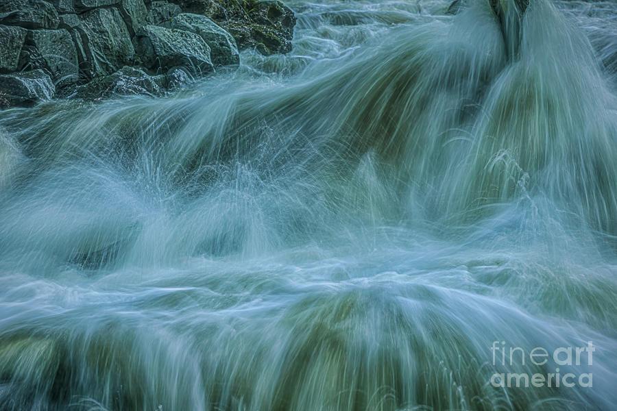 Wild Water Photograph
