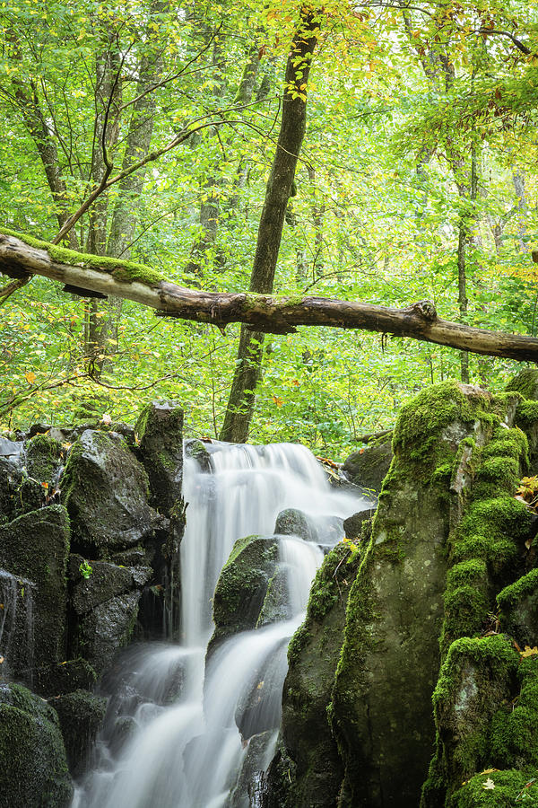 Wild Waterfall Photograph