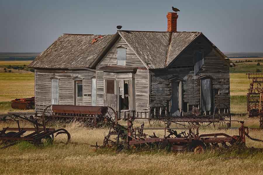 Wild Wild West Photograph