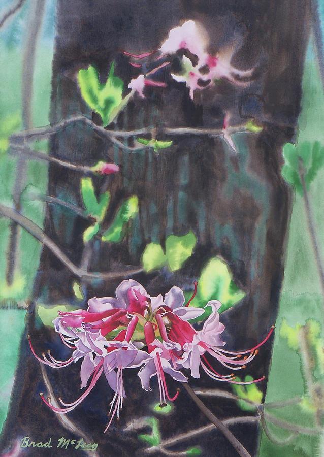 Watercolor Painting - Wild Wonder by Brad McLean