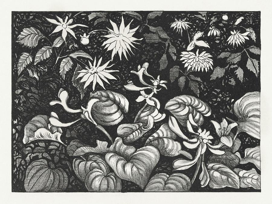 Wilde Planten En Bloemen 1878-1917 Print In High Resolution By Theo Van Hoytema. Painting