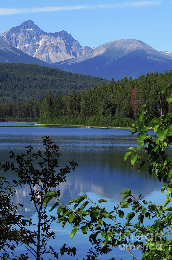 Banff Photograph - Wilderness by Mary Mikawoz