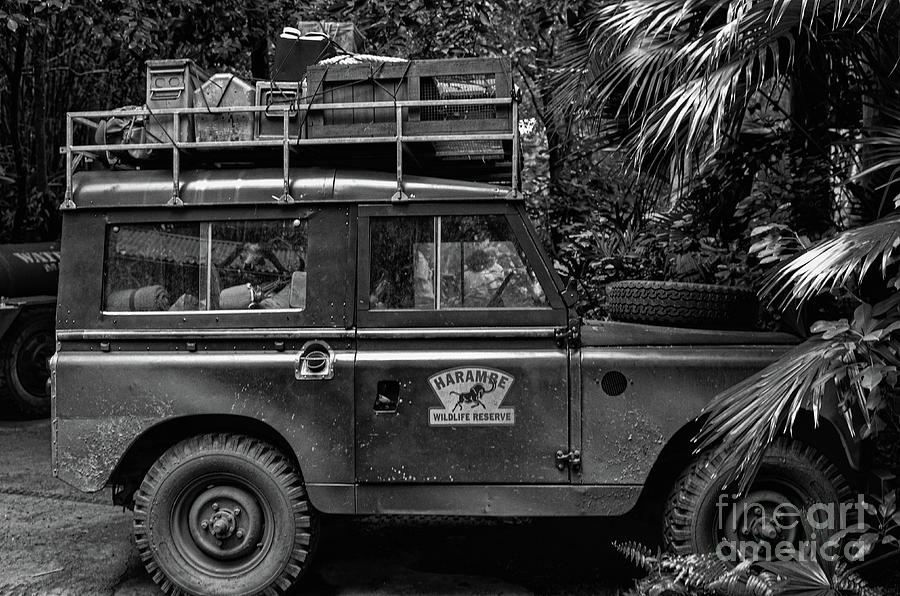 Wildlife Reserve - Land Rover Photograph