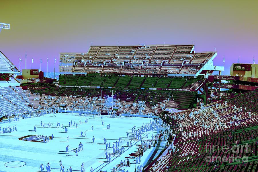 Williams - Brice Stadium #22 by Charles Hite
