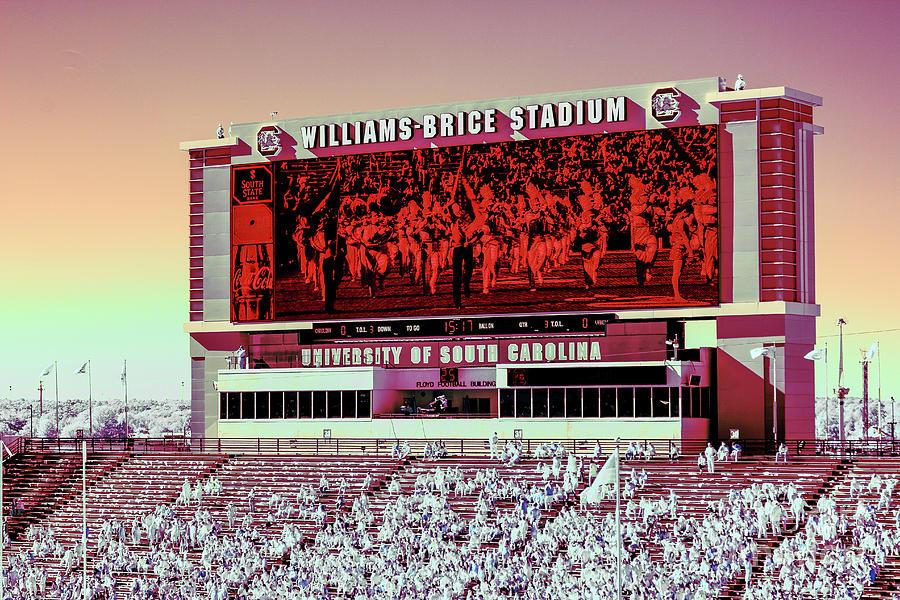 Williams - Brice Stadium #26 by Charles Hite