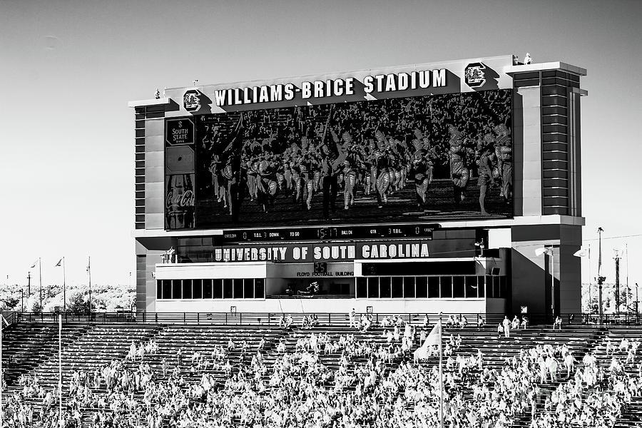 Williams - Brice Stadium #27 by Charles Hite