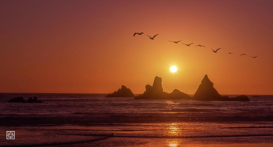 Williams Hidden Beach Big Sur Photograph by Tim Hungerford
