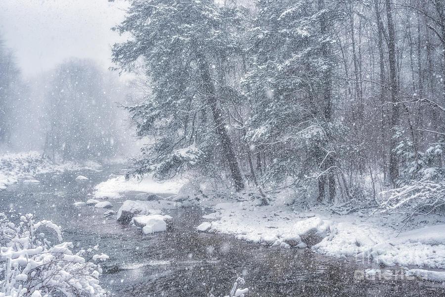 Williams River Blizzard by Thomas R Fletcher