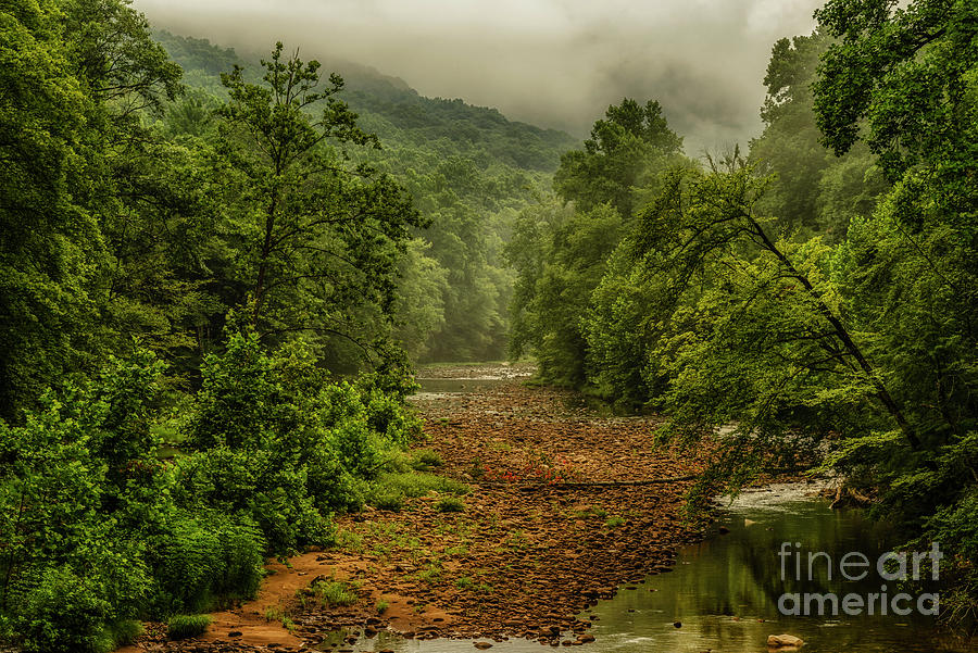Williams River On A Summer Morning Photograph