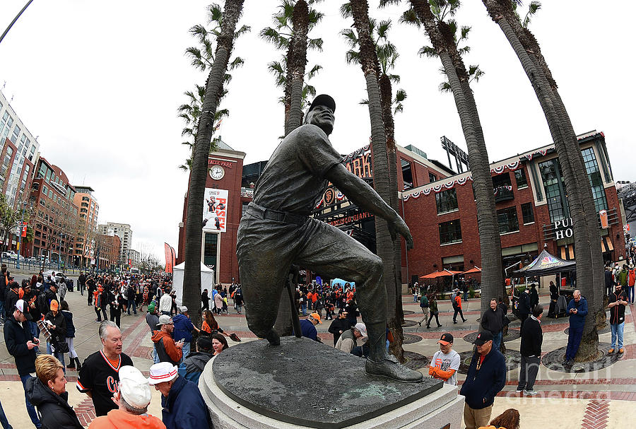 Willie Mays Photograph by Thearon W. Henderson