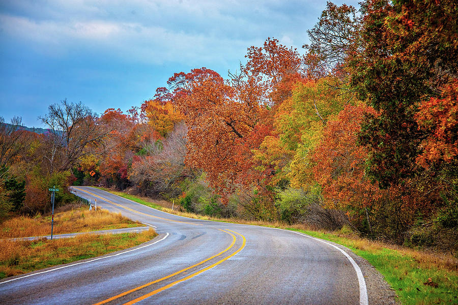Winding Through Fall on the Back Roads by Lynn Bauer