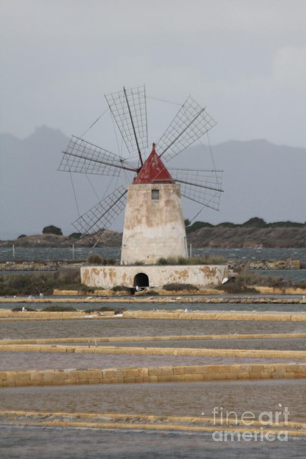WINDMILL FROM SICILIY by Diane Greco-Lesser