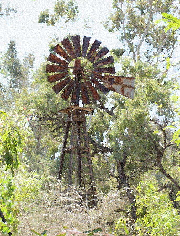 Windmill In The Trees Photograph