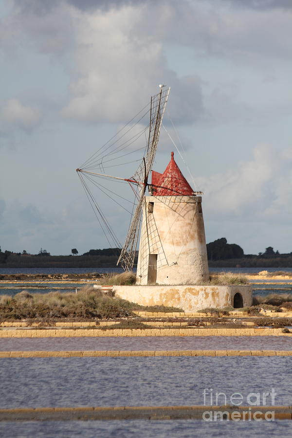 Windmill of Sicily italy by Diane Greco-Lesser