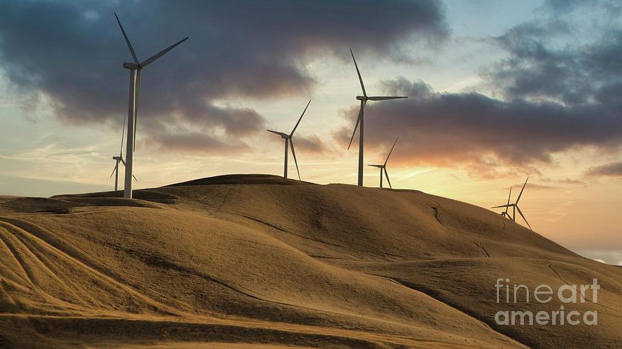 Windmills and Grassy Fields Sunset by Dustin K Ryan