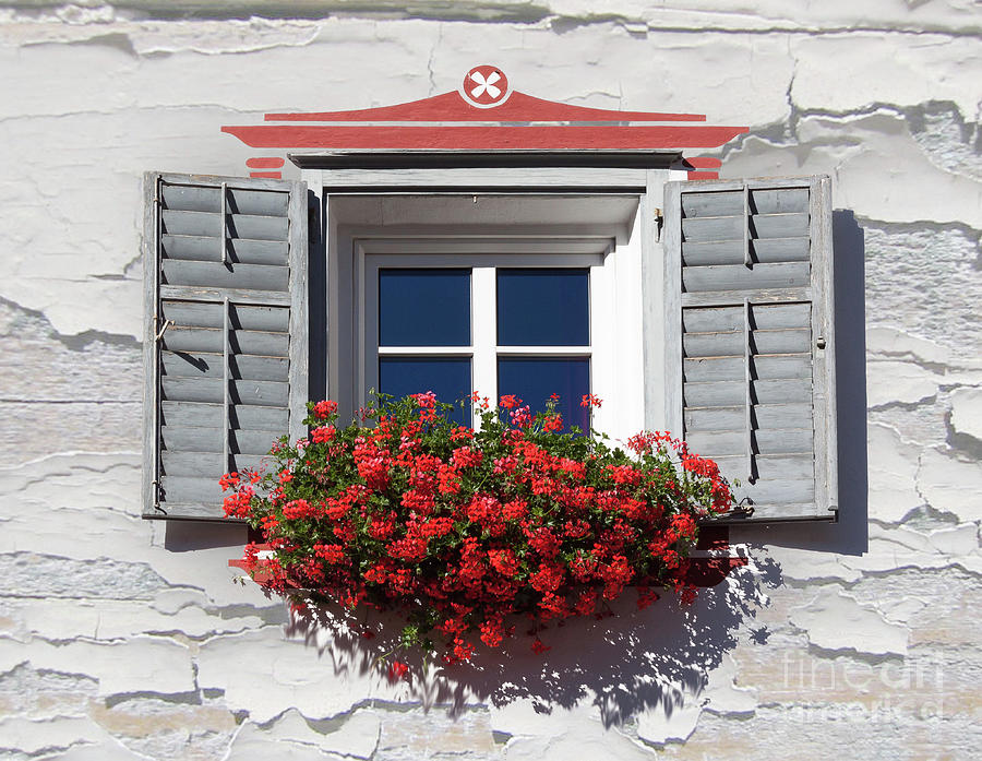 Window Floral Decorations Architecture  House Plant Mixed Media
