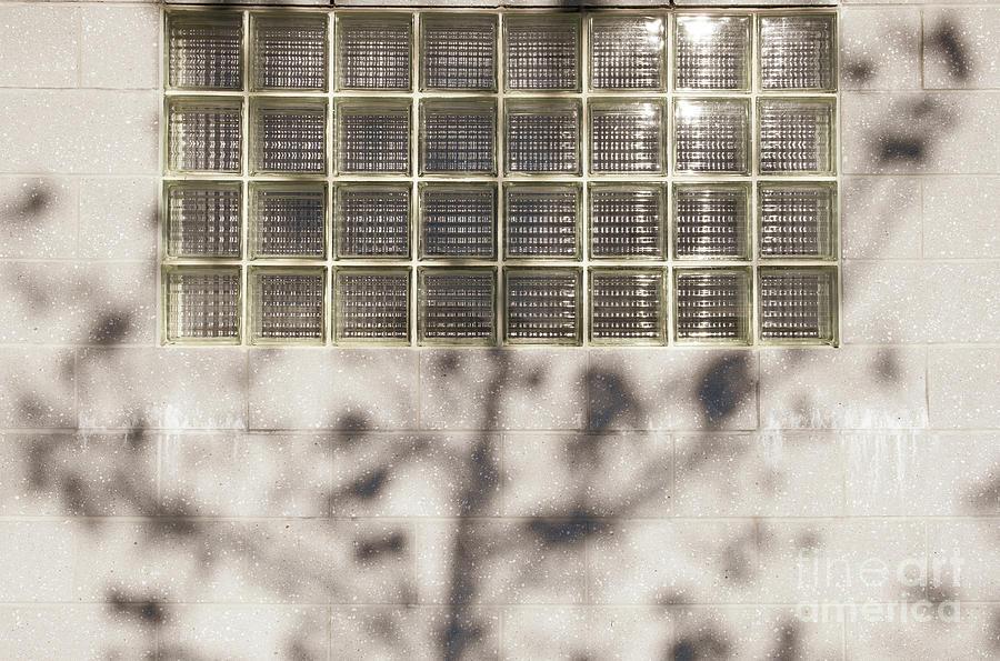Window Shade by Len Tauro