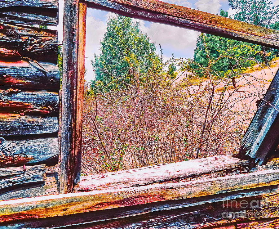 Window to the Past by Viki Velazquez