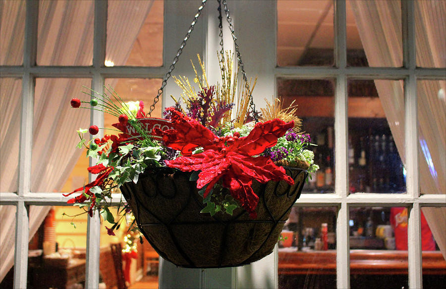 Window With Hanging Basket by Cynthia Guinn
