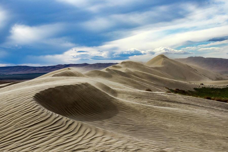Windy Dunes by Harold Carlson