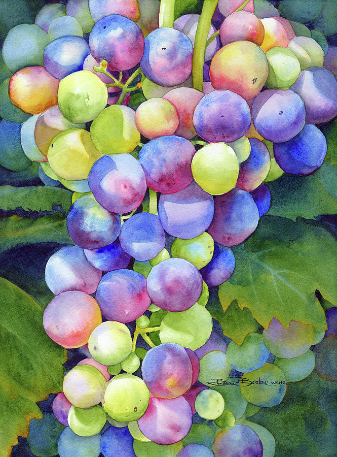 Grapes Painting - Wine On The Vine by Bonnie J Becker
