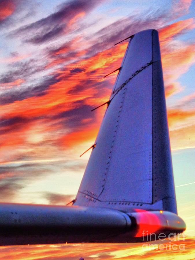 Winglet by Thomas Schroeder