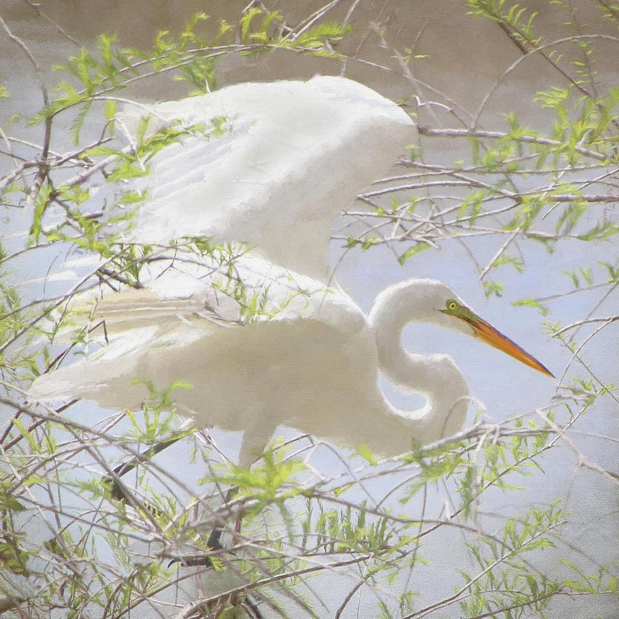 Wings in the Wood by Karen Lynch