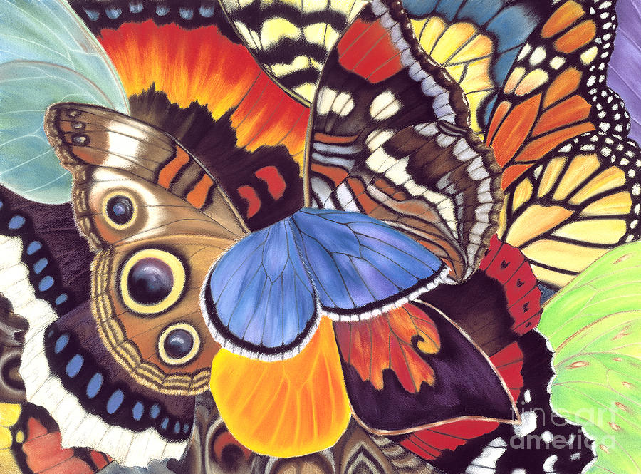 Butterflies Painting - Wings Of California by Lucy Arnold