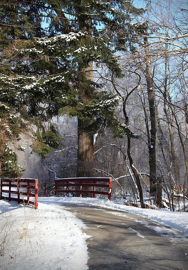 Winona Lake Winter Wonderland Photograph