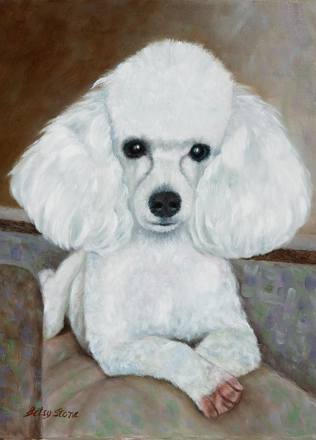Poodle Painting - Winston by Alice Betsy Stone