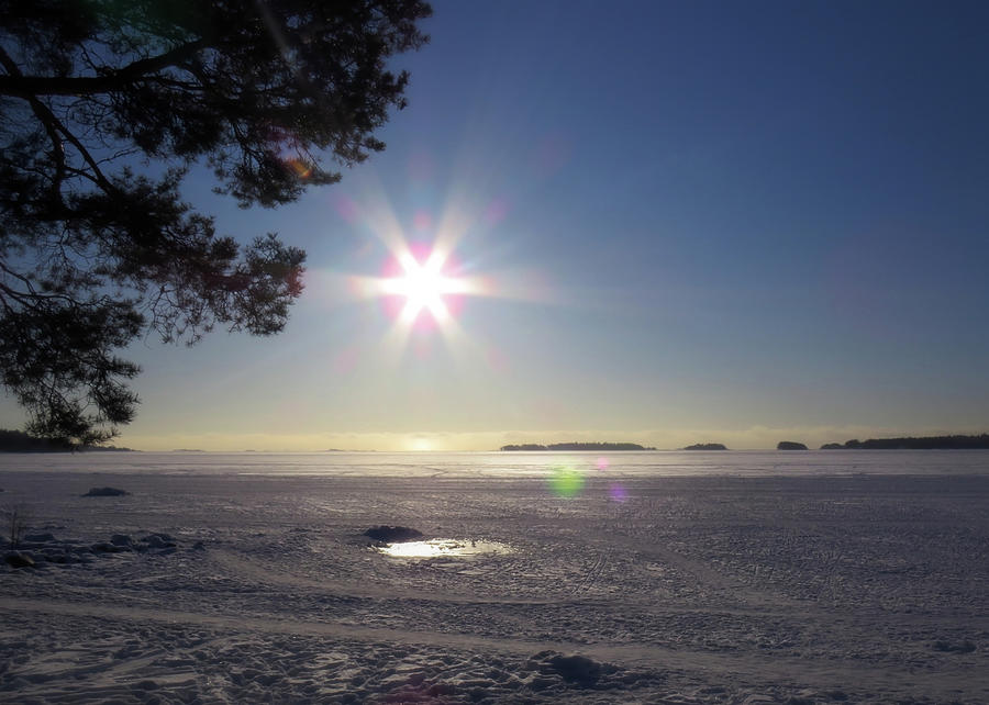 Winter Afternoon In Finland Photograph