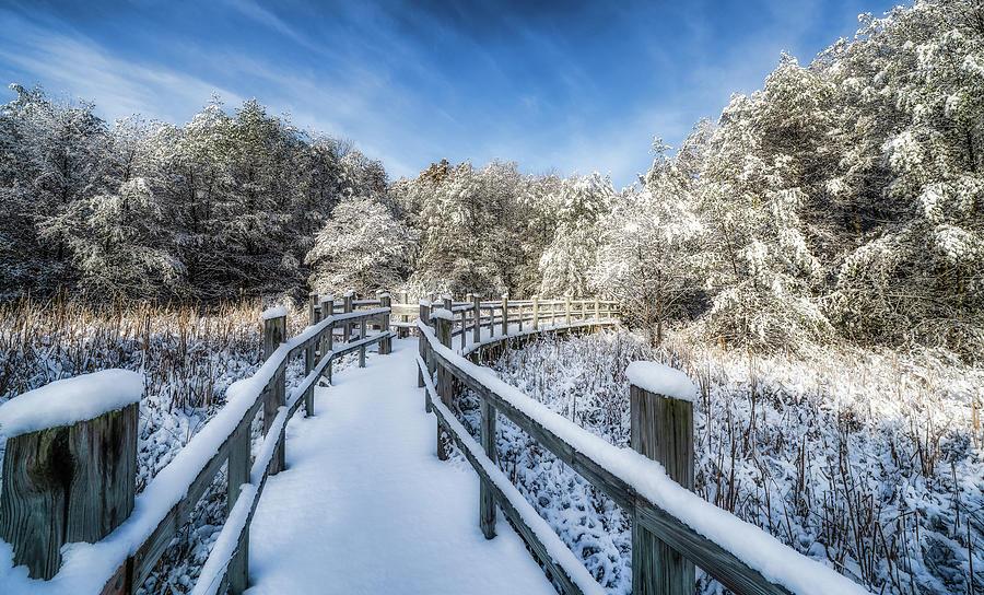 Winter Boardwalk by Brad Bellisle