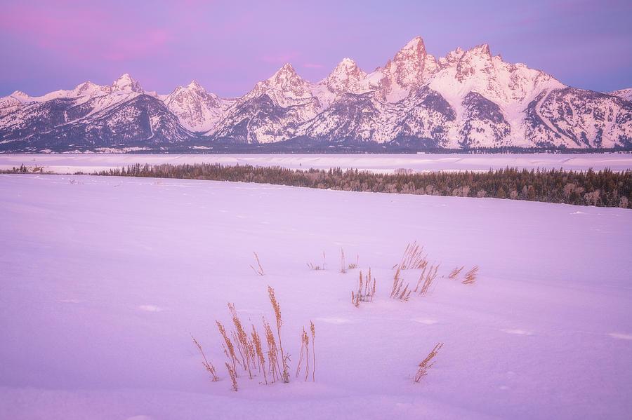 Winter Calm Photograph