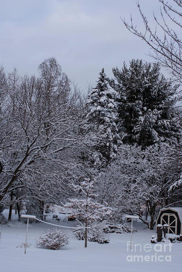 Winter Clothesline Photograph