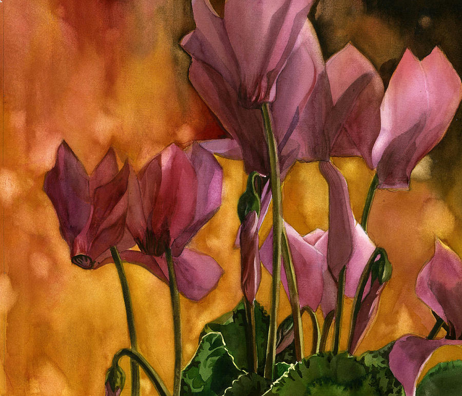 winter cyclamen by Alfred Ng