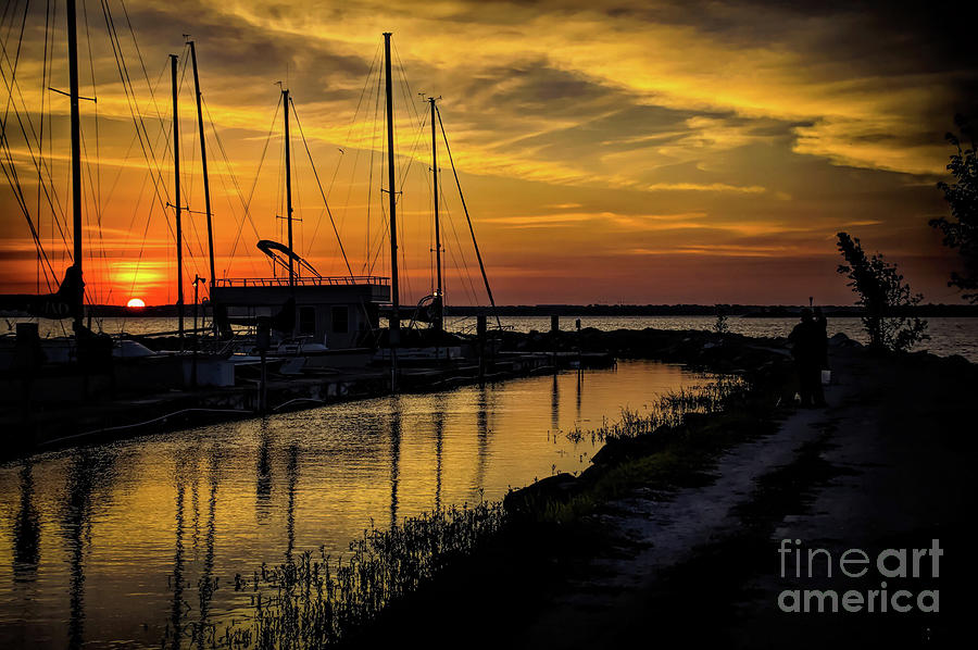 Winter Dawn by Diana Mary Sharpton