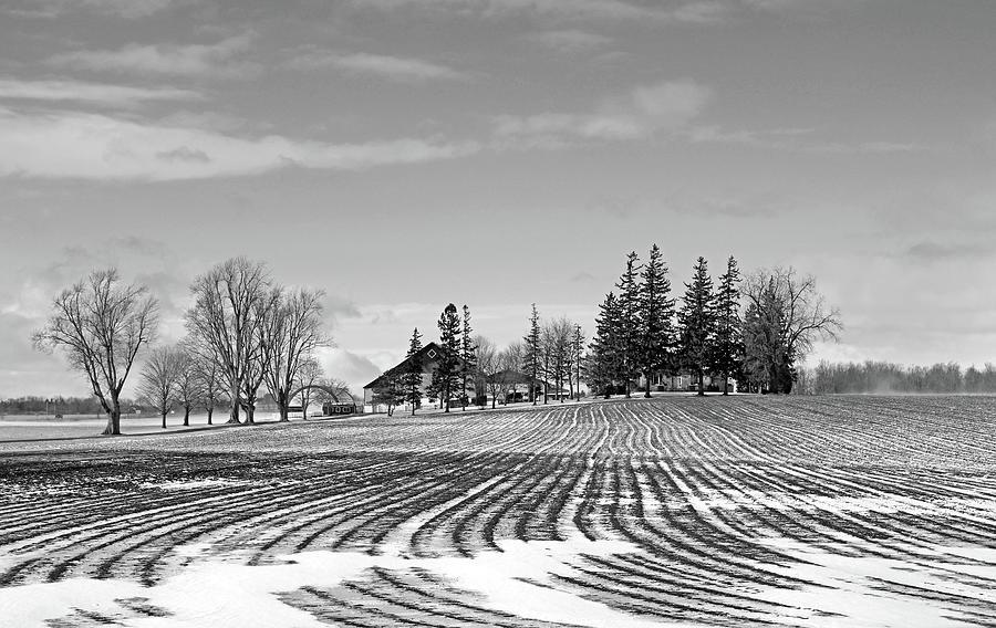 Winter Farm Black And White by Debbie Oppermann