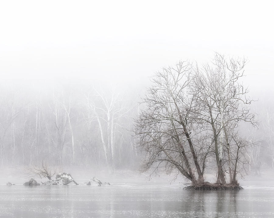 Winter Fog On The River Photograph