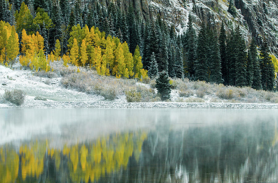 Winter Fresh Fall by Wesley Aston