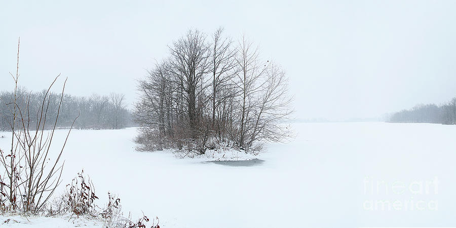 Winter island by Garry McMichael