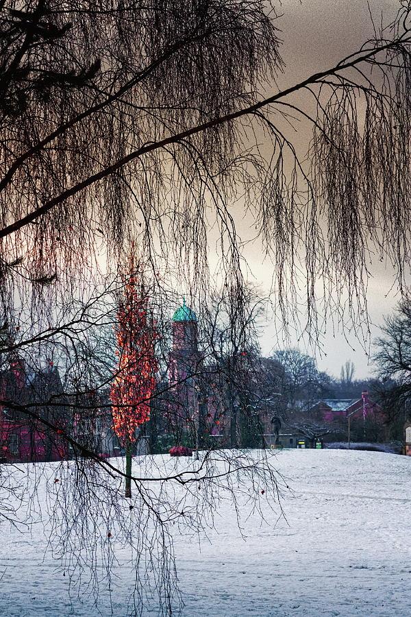 Winter Light Photograph