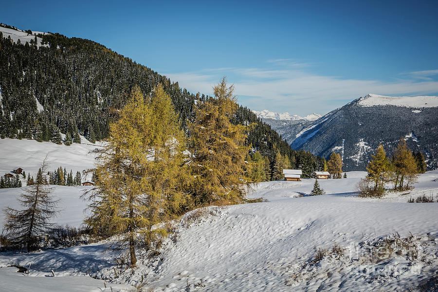 Winter Meets Fall by Eva Lechner
