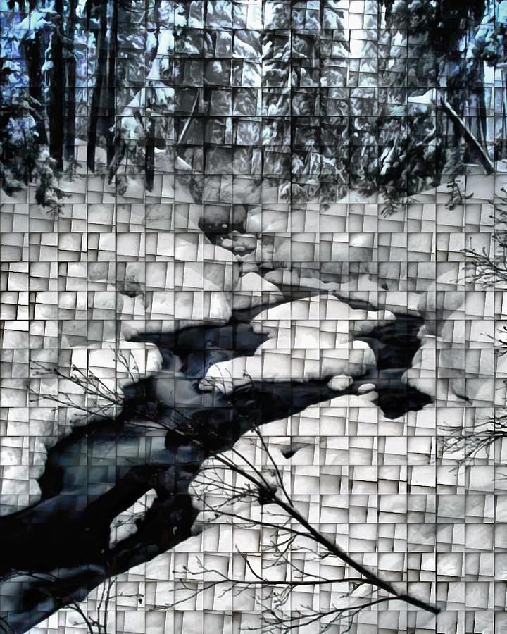 Winter Melt Digital Art