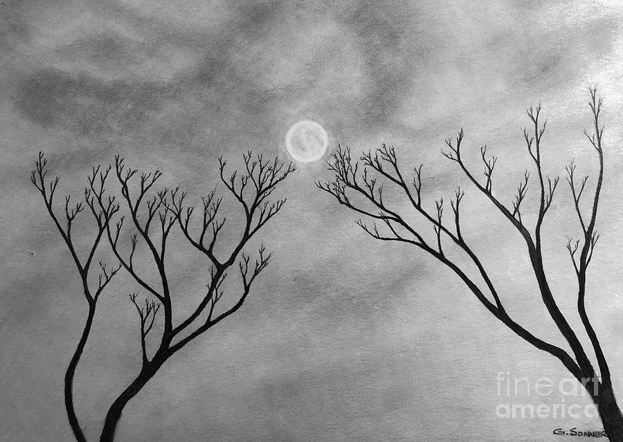 Moon Drawing - Winter Moon by George Sonner