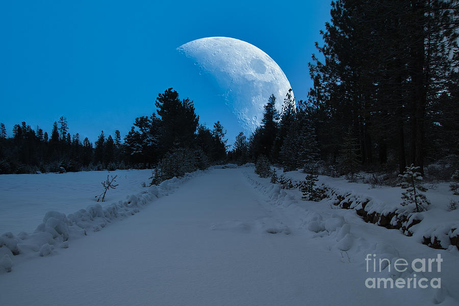 Winter Moon by Stan Townsend
