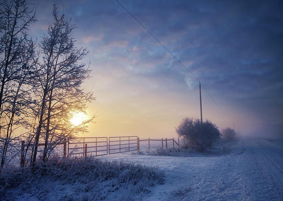 Winter Morning by Dan Jurak